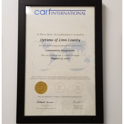 Options Accreditation certificate