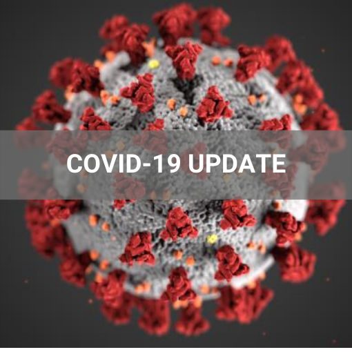 Coronavirus under the microscope