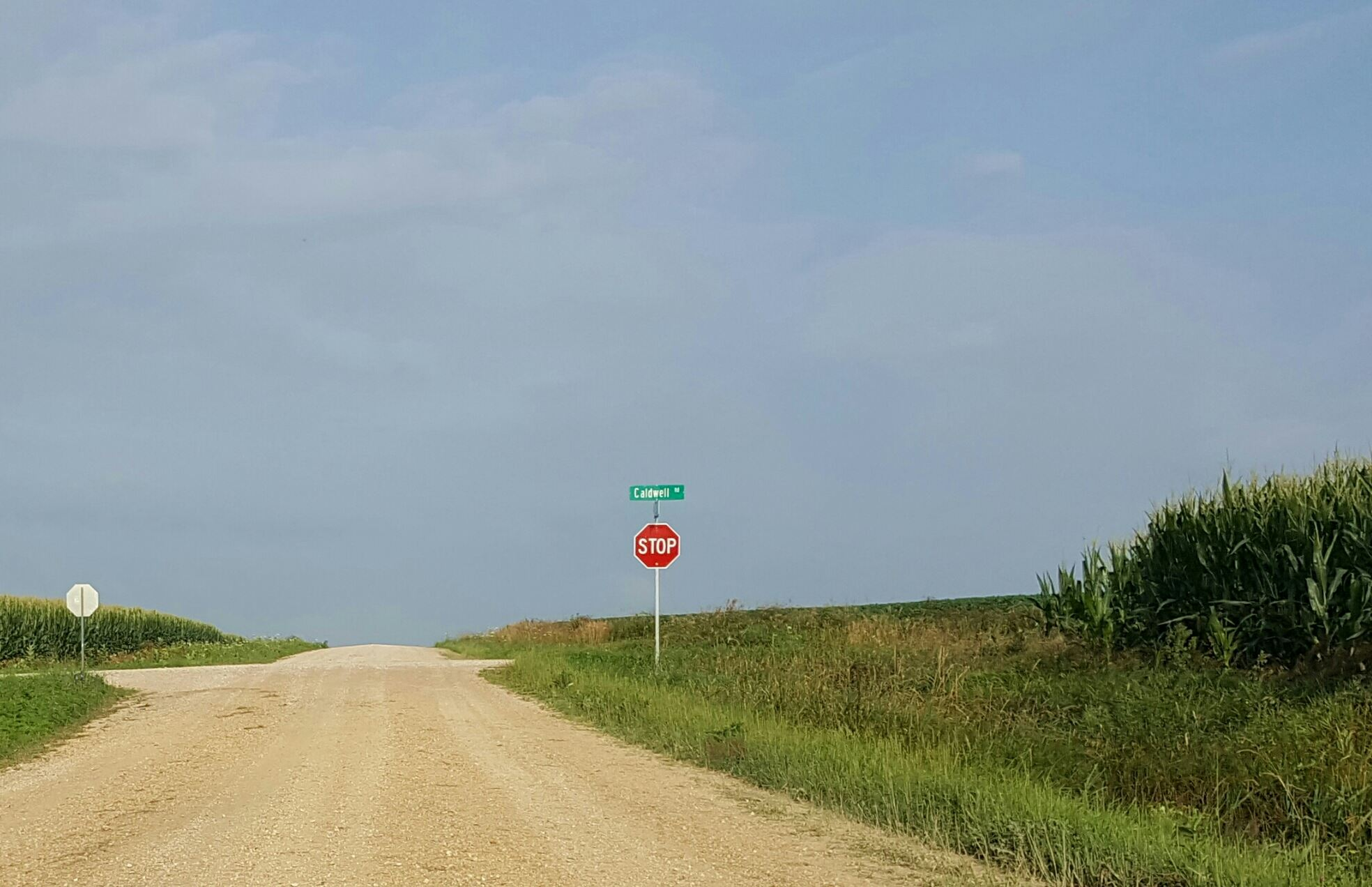 Rural intersection with corn crops