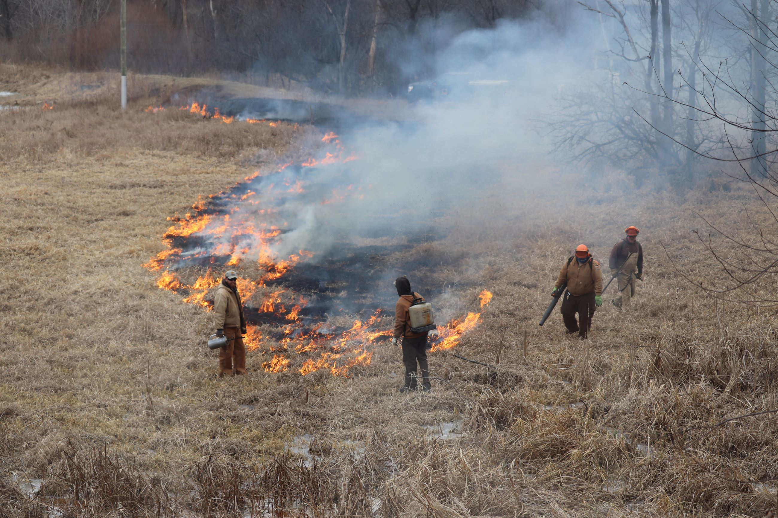 wetland burn at Wickiup Hill