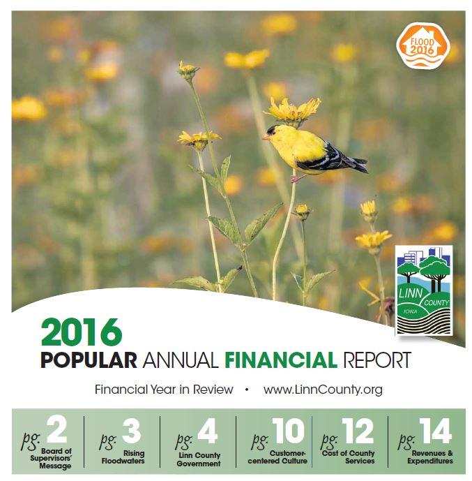 FY16 Popular Annual Financial Report cover